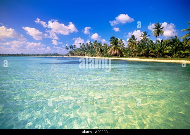 Schönes Wasser mit einem schönen weißen Sandstrand und Palmen in der Dominikanischen Republik Stockbild