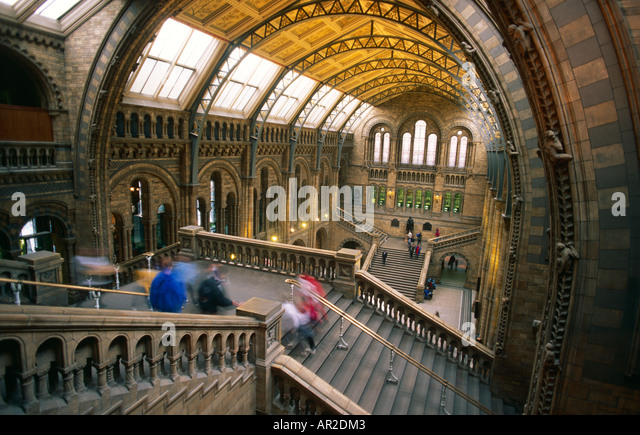 Natural History Museum, London Stockbild