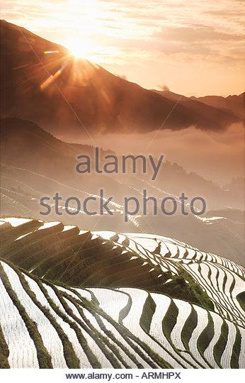 Juni Sonnenaufgang, terrassierten Longsheng Reisfelder, Provinz Guangxi, China, Asien Stockbild