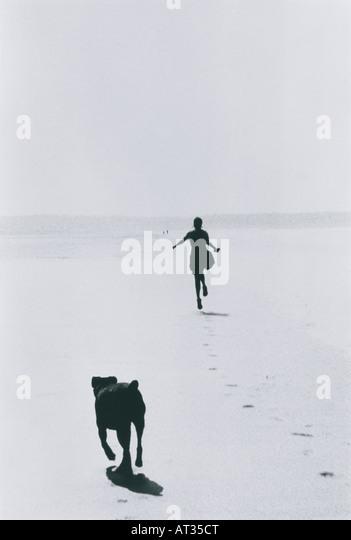 Eine Frau und Hund am Strand Stockbild