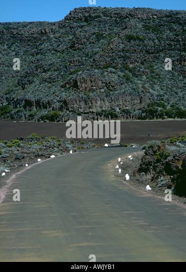 Kurve in der Straße durch bergige Region. Stockbild