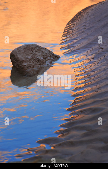 Reflexion in den Colorado River im Seitencanyon namens National Canyon Stockbild