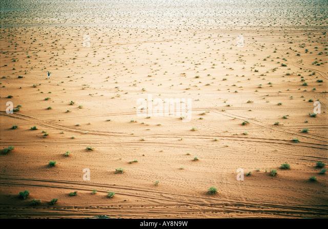 Wüstenlandschaft mit Reifenspuren, erhöhte Ansicht Stockbild
