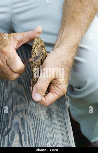 Mann schnitzen Stück Rinde, beschnitten, Ansicht Stockbild