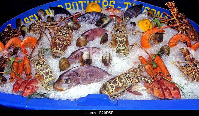 0801 Essen trinken Griechenland Stockbild