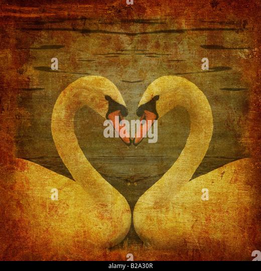 Grunge-Postkarte mit zwei Schwäne in der Liebe Stockbild