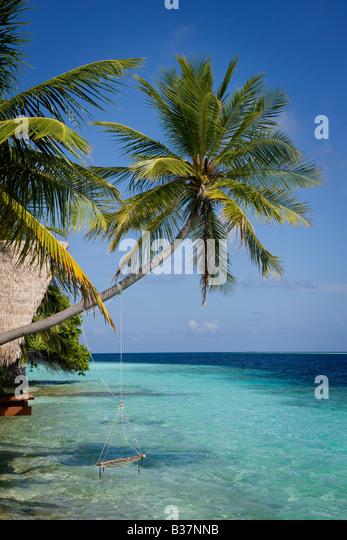 Seil Schaukel auf Süd Ari Atoll auf den Malediven in der Nähe von Indien Stockbild