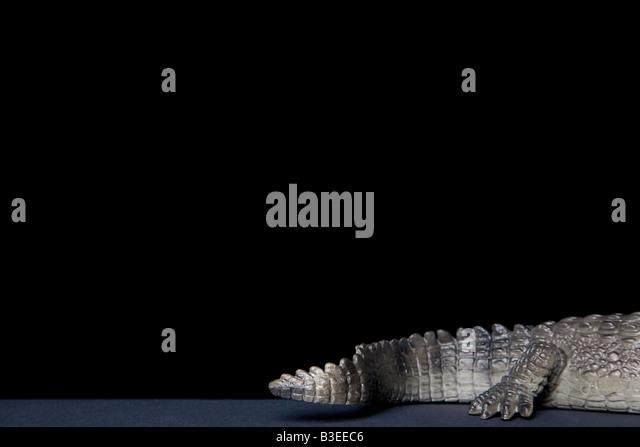 Spielzeug-Krokodile-tail Stockbild