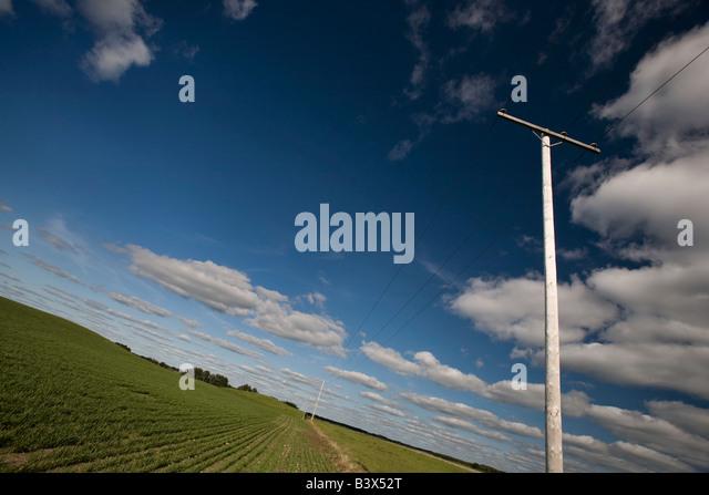 Stromleitungen in einem Prärie-Feld Stockbild