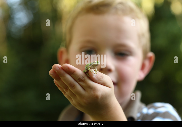 Kleiner Junge hält kleine Laubfrosch Stockbild