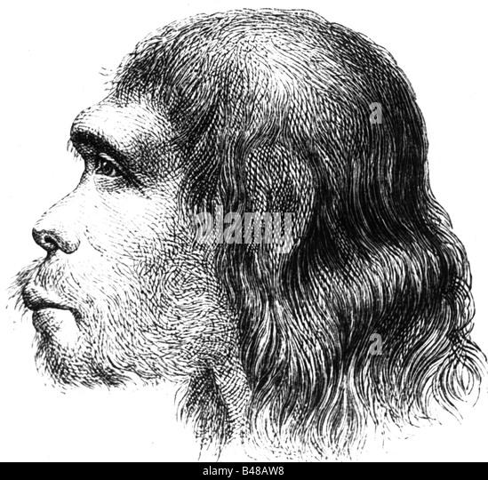 Aeon / Vorgeschichte, Menschen, Urmenschen, Homo Sapiens Neanderthalensis, Neandertaler, ca. 150000-40000 BC, Profil, Stockbild