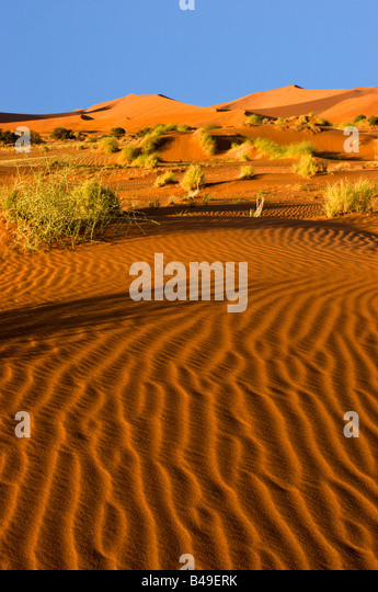 Sanddünen in der Namib-Naukluft National Park, Namibia Stockbild