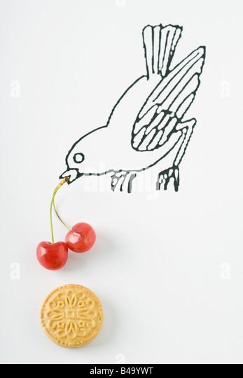 Vogel mit Kirschen und cookie Stockbild