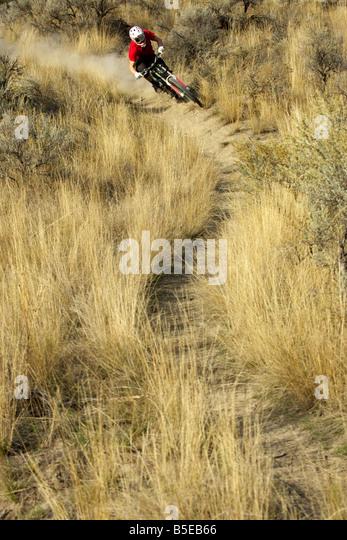 Downhill Fahrer stürzte auf einem Pfad Stockbild