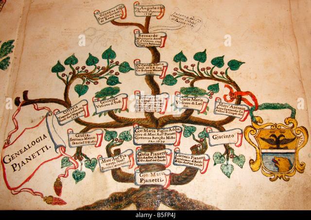 In der berühmten historischen Bibliothek in Jesi, Le Marche, Italien, den Stammbaum der Familie Pianetti der Stockbild