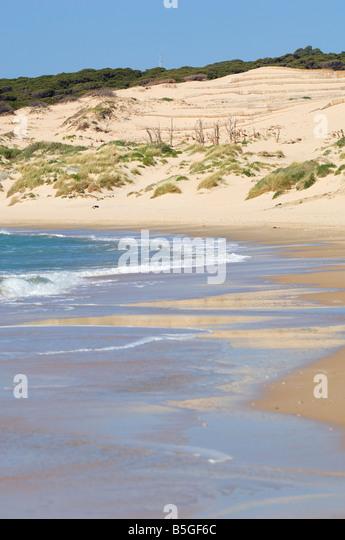 Punta Paloma Strand, Tarifa, Cádiz, Andalusien, Spanien Stockbild