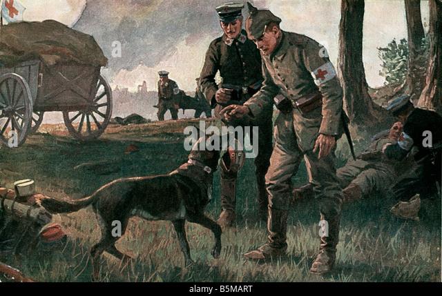 2 M60 L1 1914 11 WW1 A wahre Helfer nach Roloff militärische medizinische A wahre Helfer A Gebrauchshund den Stockbild