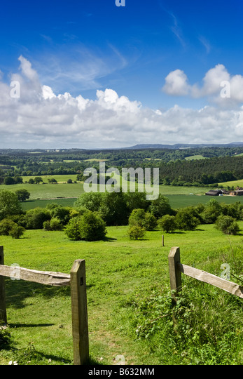 Surrey UK - englische Landschaft - North Downs Way mit Blick auf den South Downs in Newlands Ecke Stockbild