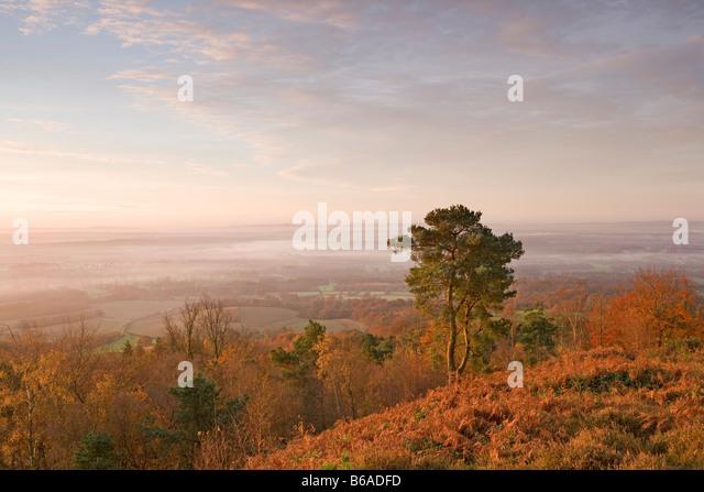 Am frühen Morgen [Blick von Leith Hill] [North Downs] [Surrey Hills] Herbst Stockbild