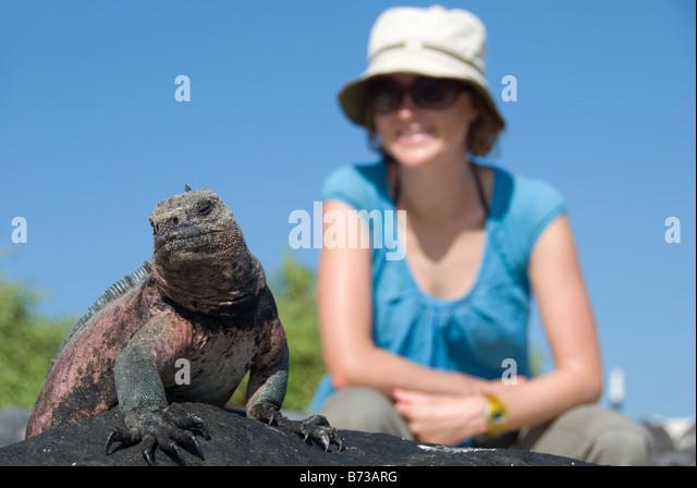 Eine Frau posiert mit einem Leguan auf den Galapagos Inseln Stockbild