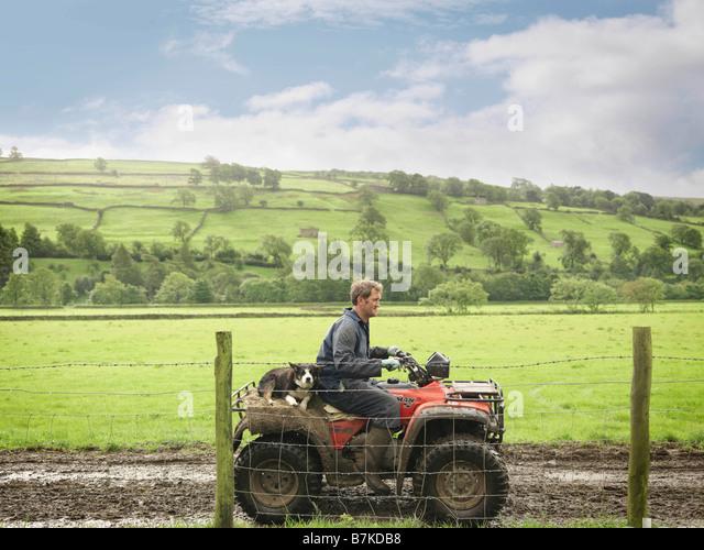 Bauer und Hund auf Traktor Stockbild