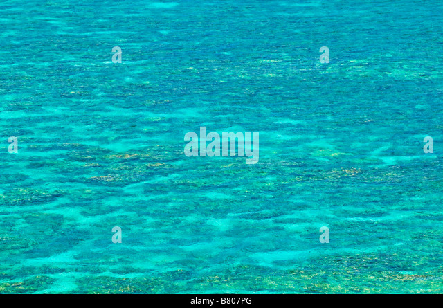 Korallenriff an Hideaways Strand Insel Kauai Hawaii Stockbild