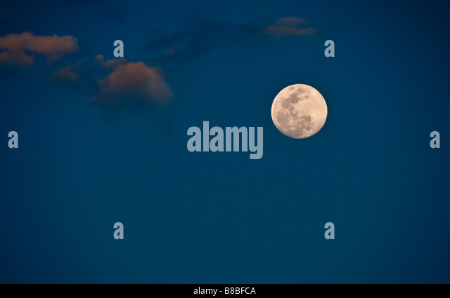 Vollmond in den Tropen Stockbild
