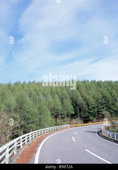 Rechtskurve Straße durch Wald Stockbild