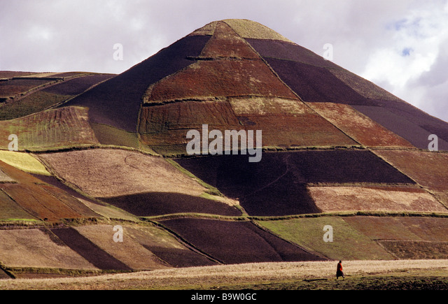 Feldern in der Provinz Cotopaxi-Ecuador-Anden Stockbild