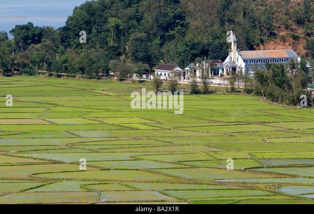 Katholische Kirche und Reisfeldern südlich von Hue, Vietnam Stockbild