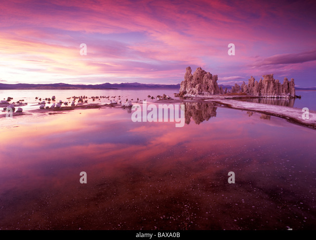 Mono Lake Tufas Stockbild