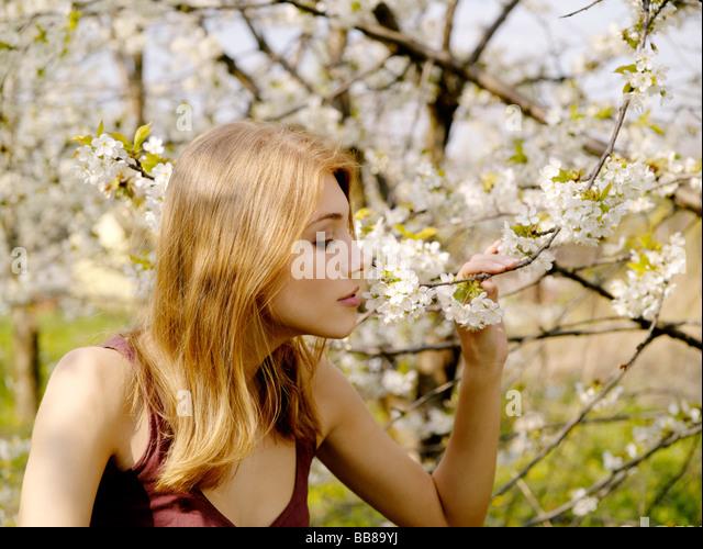 1253139 Menschen Porträt einer Frau 25 30 Jahre Erwachsene blonde Geruch Baum halten Touch Zweig Zweige Blume Stockbild