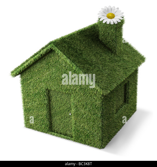 3D Render eine Rasen-Haus-Ökologie-Konzept Stockbild
