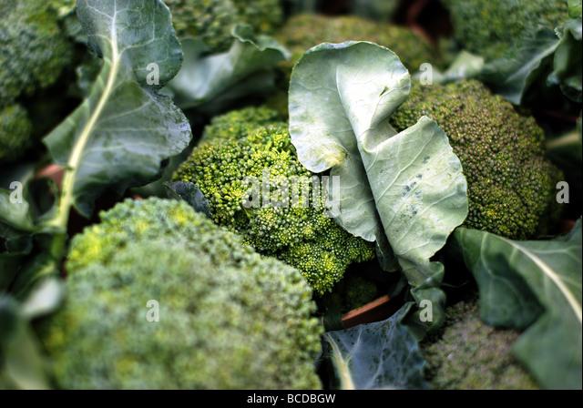 Bunte Früchte und Gemüse in Evanston Farmers' Market. Grünen Brokkoli Stockbild