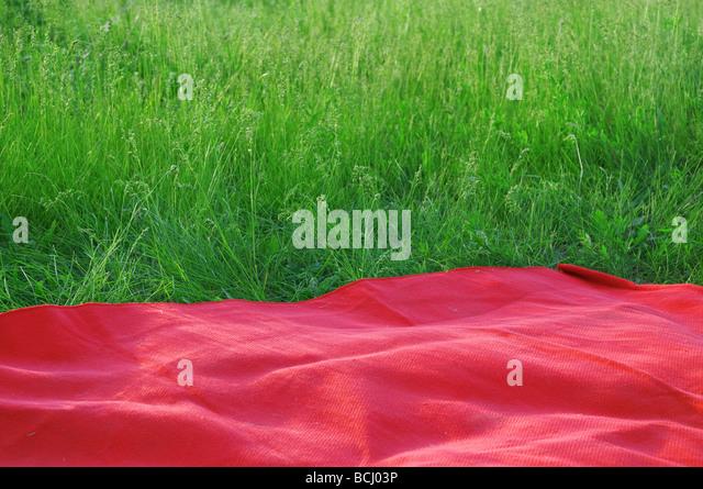 Sommerwiese als Ruhestätte Stockbild