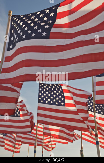 Mehrere amerikanische Flaggen im Wind, USA Stockbild