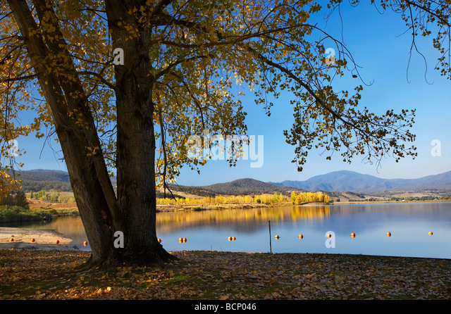 Bäume am Boot Hafen Picknick Bereich Ökonomie Laufschwellkraftwerken und Herbst Farbe Snowy Mountains Stockbild
