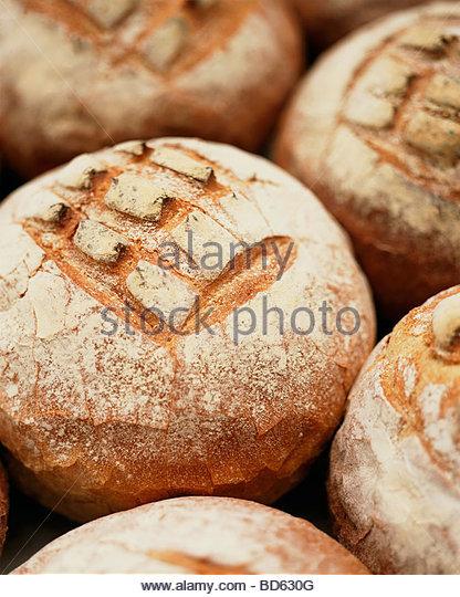 Verschiedene Brote Landbrot (Weizen und Roggen Brot) Stockbild