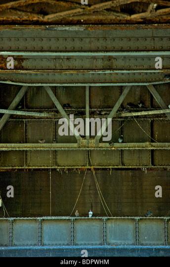 Eisenträger unter einer Eisenbahnbrücke mit Tauben Stockbild