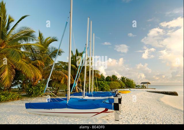 Hobby Auto, Katamarane, Segeln Boote, nebeneinander, am Strand, Palmen, Malediven-Insel, Süd Male Atoll, Malediven, Stockbild