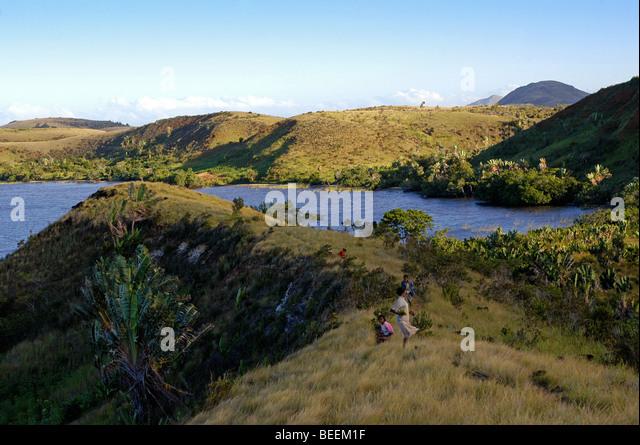 Madagaskar - schöne Buschland nördlich von Fort Dauphin Stockbild