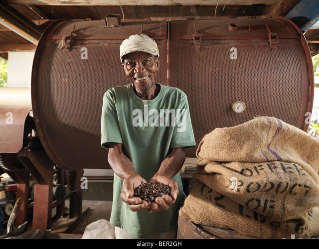 Arbeiter mit Kaffeebohnen Stockbild