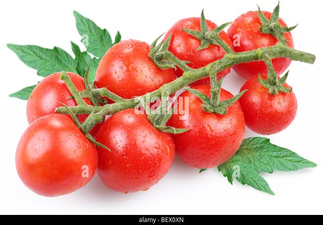 Tomaten, Objekt auf einem weißen Hintergrund Stockbild