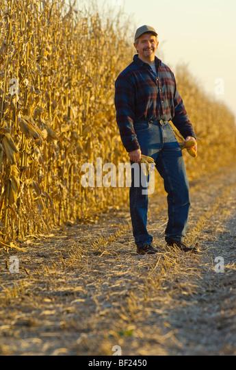 Ein Bauer stellt während Inspektion Reife Ähren Getreide im Feld mit seinem teilweise Mais im Hintergrund Stockbild