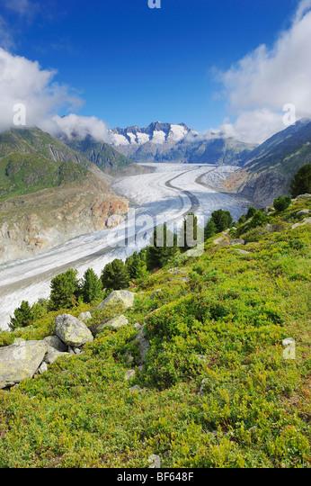 Aletschgletscher, UNESCO-Welterbe Jungfrau-Aletsch-Bietschhorn, Goms, Wallis, Schweiz, Europa vor Ort Stockbild
