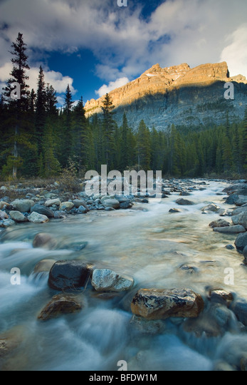 Malerischen Scenic von Mosquito Creek, Banff Nationalpark, Alberta, Kanada Stockbild