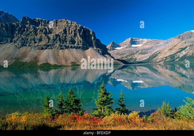 Herbstfarben am Bow Lake mit Crowfoot Berg, Banff Nationalpark, Alberta, Kanada Stockbild