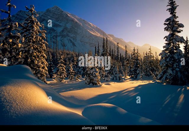 Sonnenuntergang in Winterlandschaft am Boom Lake, Banff Nationalpark, Alberta, Kanada Stockbild