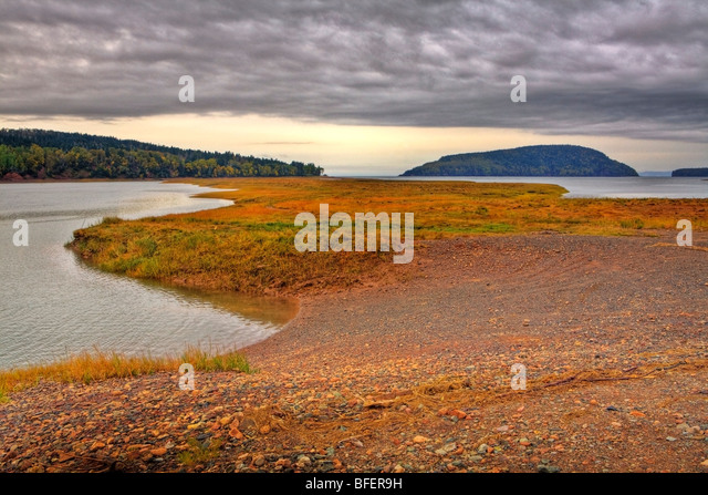 Salz-Sumpf in der Nähe von Wirtschaft, Five Islands, Nova Scotia, Kanada Stockbild