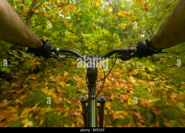 Mountainbike-Strecke zeigt seine Aumtumn in Streifen von gelben und grünen Farben.  Courtenay, Comox Valley Stockbild